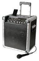 Pulse Trekker Portable Busker PA System