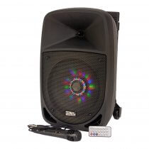 "Party Light & Sound 8"" 300W Portable Sound System inc. Mic and Remote"