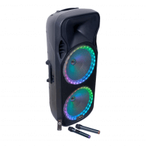 PLS Portable Sound System with Wireless Microphones