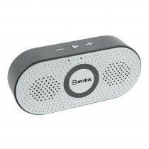 av:link BOPP Silver Portable Bluetooth Speaker